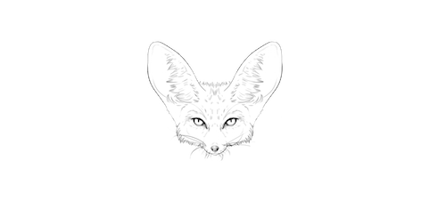 Fox Den Productions - Director of Photography / Film - Panama / NYC
